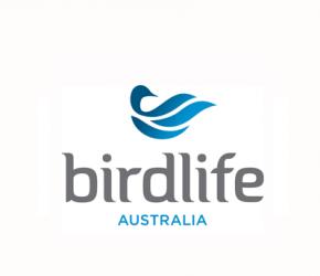birdlife1